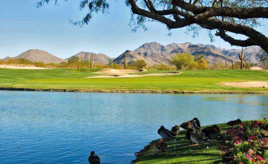 Grayhawk Golf Club In Scottsdale Az
