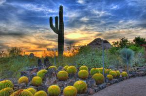 Grayhawk Scottsdale Arizona
