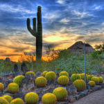 Top 3 Reasons Why You Should Buy a Home in Grayhawk